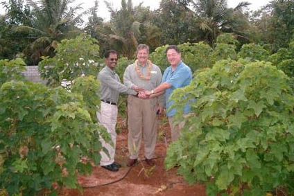 An image of Founder Russ Teall at groundbreaking India Bioenergy project.