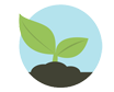 Icon of a leaf that represents Biodico's use of Greenhouses to grow and regulate feedstock development for alternative energy needs.