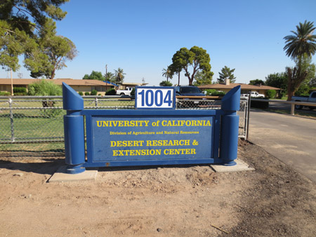 An image of the University of California Red Rock Ranch research center for brassica biofuel feedstock research.