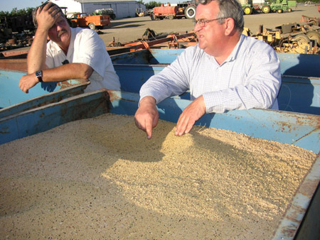 Biodico Founder Russ Teall with a container of Brassica Feedstock for Biofuel Development.